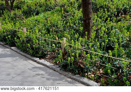 A Rope Fence In The City Park Protects Flower Beds From The Entrance Of People Dogs Or Bicycle Entry