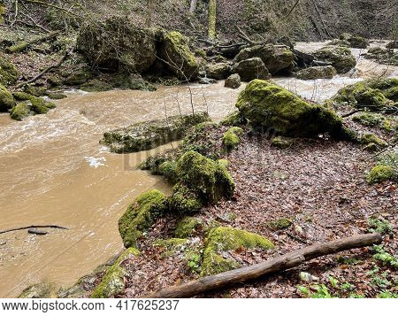 Fast River Near The Shore On A Rainy Day. A Muddy River Near The Shore With Plants In The Countrysid