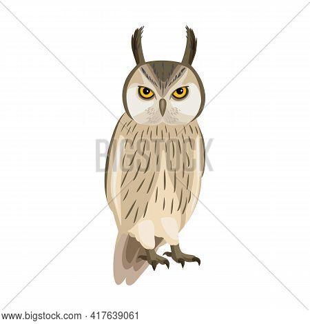 Owl Bird Cartoon Vector Illustration Of Icon. .vector Icon Of Animal Owl. Isolated Cartoon Illustrat