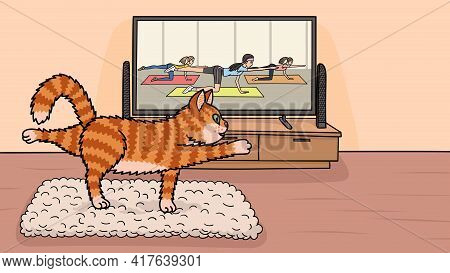 A Red Cat Is Doing Aerobics On The Mat In Front Of The Tv.