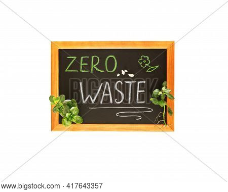 Isolated Black Wooden Board With Chalk Inscription Zero Waste And Green Kalanchoe Branches. Training