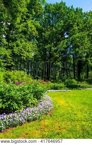 Garden design.Summer garden. Garden with fresh green grass, flowers, bushes and trees. Garden landscape design Fresh grass lawn, curve form flowers,garden landscape,garden design,garden field
