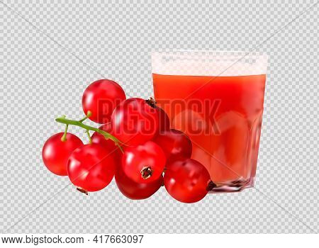 Glass Of Cranberry Juice. Ripe Red Cranberries, Cranberry, Raspberry, Cherry Fresh Juice