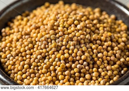 Raw Organic Yellow Mustard Seeds