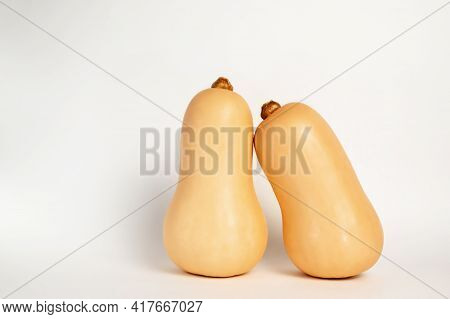 Butternut Squashes Isolated On White Background. Healthy Food.vegan And Vegeterian Concepts