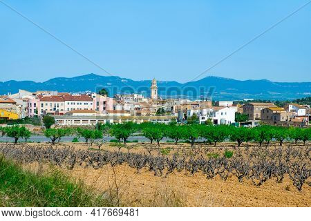 a panoramic view over Nulles, a small farming village in Tarragona Province in Catalonia, Spain, higlighting the bell tower of its church, dedicated to Saint John the Baptist