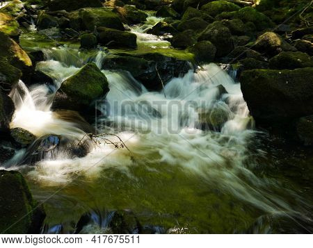 Green River With Seaweeds And Mossy Stones Flowing Through The Forest