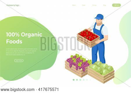 Isometric Farmer Holding A Box With Apples, Cabbage And Grapes. Farmer With Freshly Harvested Apples