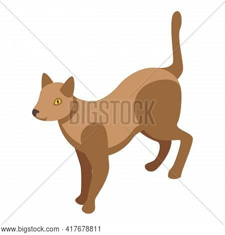 Cats Allergy Icon. Isometric Of Cats Allergy Vector Icon For Web Design Isolated On White Background