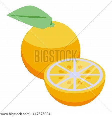 Citrus Allergy Icon. Isometric Of Citrus Allergy Vector Icon For Web Design Isolated On White Backgr