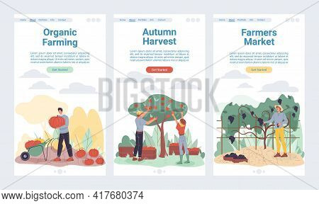 Vector Cartoon Flat Farmer Characters Harvesting, Workers Grows And Harvest Vegetables, Fruits-natur