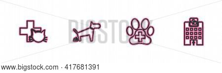 Set Line Veterinary Clinic, , Dog Pooping And Medicine Hospital Icon. Vector