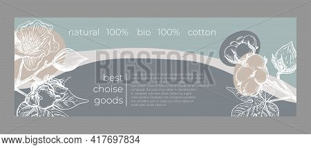 Template Card Cotton Flower. Vector Illustration Layout Template Design. Decorative Print. Poster, C