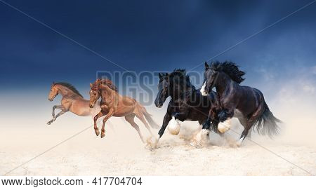 A Herd Of Black And Red Horses Galloping In The Sand Against The Background Of A Stormy Sky. Four St