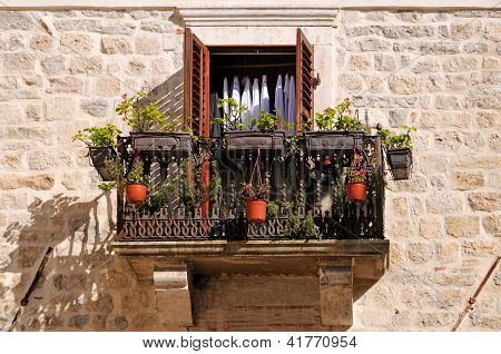 Old balcony with flowers and plants