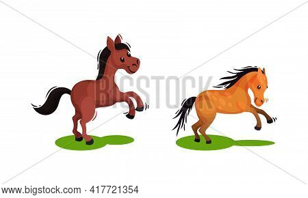 Horse With Crest Standing On Hind Legs And Galloping Vector Set