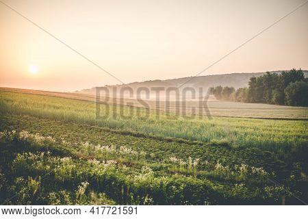 Sun Rising Over The Polish Farmland, Eastern Poland