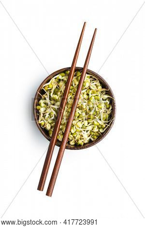 Sprouted green mung beans. Mung sprouts in wooden bowl isolated on white background.