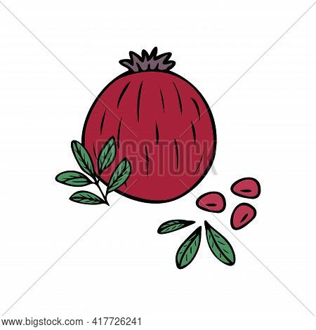 Hand Drawn Pomegranate Fruit, Pomegranate Seeds, Leaves Isolated On A White Background. Doodle, Simp