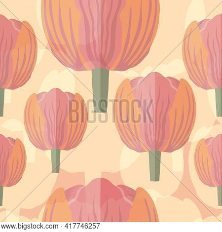 Seamless Pattern With Varietal Pink And Orange Tulip. Pink Silhouettes Of The Same Tulip On The Bott