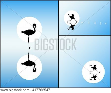 Lonely Flamingo On Lake. Endangered Bird Isolated Silhouette