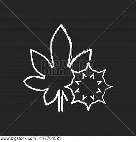 Castor Bean Chalk White Icon On Black Background. Exotic Flowering Plant. Ricinus Communis. Cause Of