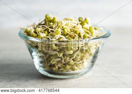 Sprouted green mung beans. Mung sprouts in bowl on kitchen table.
