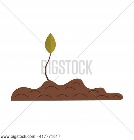 Zero Waste, Leaf Growing Out The Ground Isolated On A White Background. Recycling Of Garbage, Natura