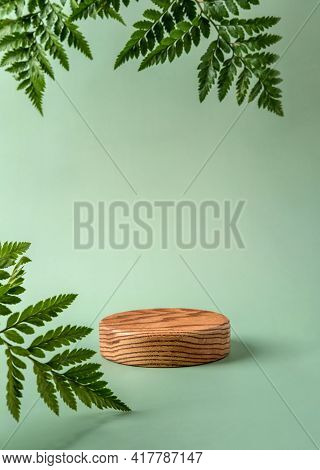 Wooden Podium To Show Cosmetic Products With Fern Leafs On Green Background. Modern Still Life.