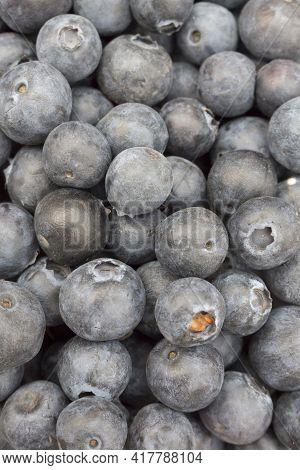 Ripe Blueberries, Fruit On The Market Counter. On Top Is A Pile Of Fresh Ripe Blueberries, Berries S