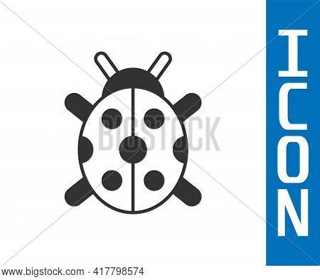 Grey Ladybug Icon Isolated On White Background. Vector