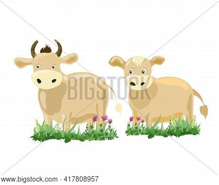 Cow And Calf In The Grass On A White Background. Drawing For Children