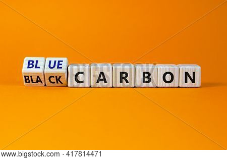 From Black To Blue Carbon. Turned Cubes And Changed Words 'black Carbon' To 'blue Carbon'. Beautiful