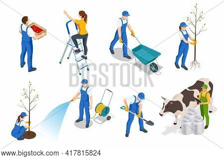 Isometric Set Of Farmers Or Agricultural Workers Planting Crops, Farmer With A Wheelbarrow, Harvesti