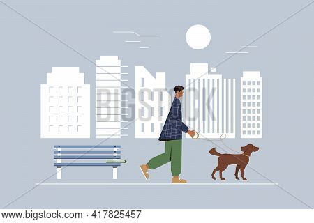A Man With An Irish Red Setter On A Leash Walks Around The City. The Concept Of Outdoor Activities A