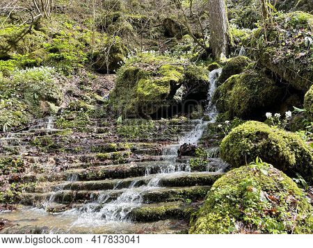 Beautiful Landscape Of Mountain Stream Flowing Down Stone Steps. Mountain Waterway Flowing Down Natu