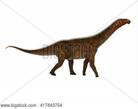 Mierasaurus Dinosaur Full Length 3d Illustration - Mierasaurus Was A Herbivorous Sauropod Dinosaur T