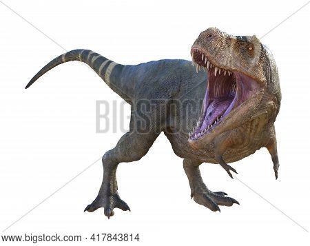 Tyrannosaurus Dinosaur Roaring 3d Illustration - Tyrannosaurus Rex Was A Carnivorous Theropod Dinosa