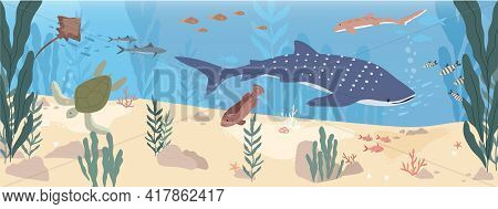 Underwater Life Of Fishes At Sea Bottom. Wild Animals Swimming Under Water. Undersea Landscape With