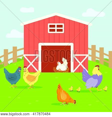 Cute Hens With Chickens Walking On Farm Yard. Grass, Feather, Egg Flat Vector Illustration. Farm Ani
