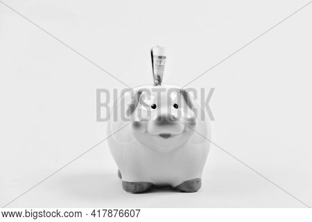 Money Budget Planning. Economics And Finance. Piggy Bank Pink Pig Stuffed Dollar Banknote Cash. Save
