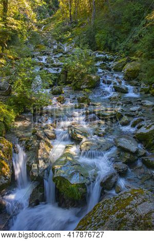Shallow River Water Splashing And Falling Over Rocky Riverbed In Scenic New Zealand Forest.