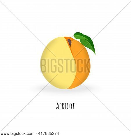 Single Apricot Fruit Isolated On White Background. Vibrant Colored Plump Apricot With Green Leaves.