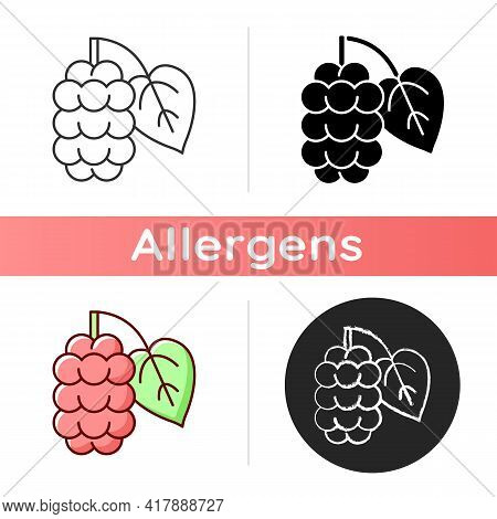 Mulberry Icon. Morus Fruit, Blackberry On Branch. Fresh Nutrient Food Ingredient. Botanical Allergen