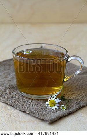 Glass Cup Of Hot Herbal Chamomile Tea On A Wooden Table With Copy Space With Fresh Flowers And Green