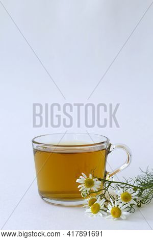 Mug Of Chamomile Tea. Glass Cup Of Iced Herbal Chamomile Tea On A White Table With Copy Space. Cup O
