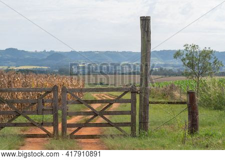 Wooden Gate Of Rural Property And In The Background A Corn Field. Area Of Farms And Agricultural Pro