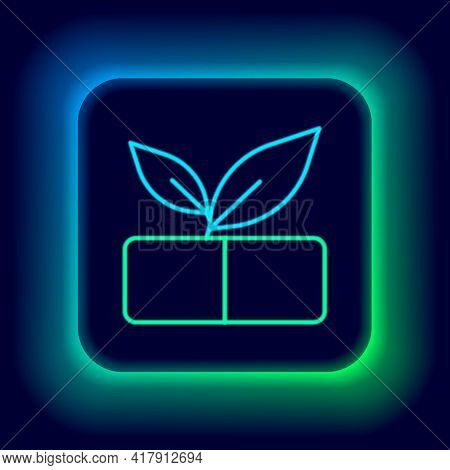 Glowing Neon Line Medical Pill With Plant Icon Isolated On Black Background. Herbal Pill. Colorful O