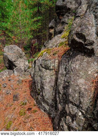 Vertical Stones - A Rock Formation Along Fr1105 On The South Side Of Black Butte - Northwest Of Sist