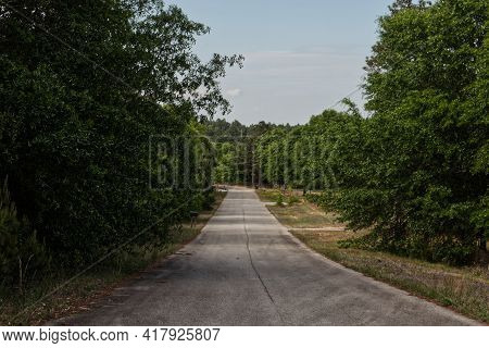 Augusta, Ga Usa - 04 08 21: Rural Country Narrow Road In The Country Lush Green Foliage